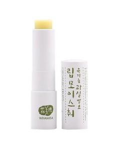 Organic fruits lip moisture (bálsamo labial de frutas) 4g Whamisa